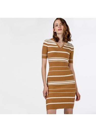 Lacoste Kadın Kısa Kollu Elbise EF0150.50K Kahve